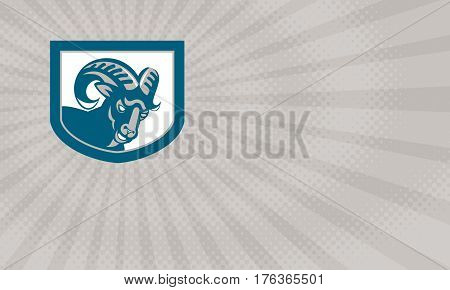Business card showing Illustration of an angry ram mountain goat head facing front set inside shield done in retro style.