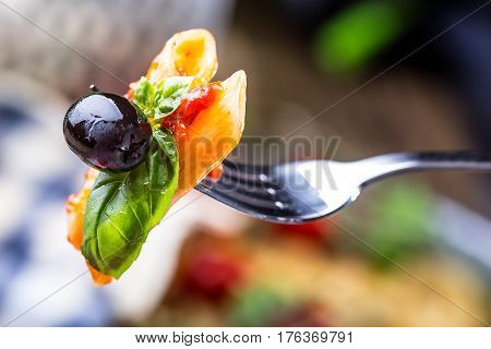 Pasta Penne with Tomato Bolognese Sauce Parmesan Cheese black olive and Basil on a Fork. Mediterranean food.Italian cuisine.