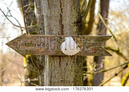 Sign on a tree in Germany indicating direction to Santiago de Compostela in Spain on the Road to Santiago