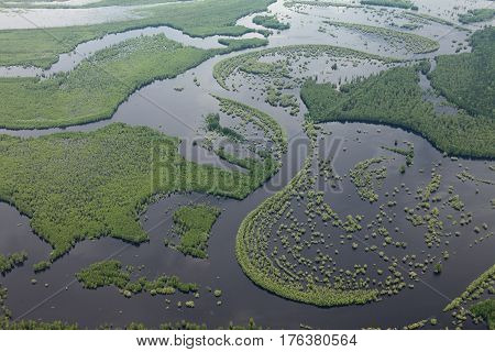 Aerial view over forest river in flood period.