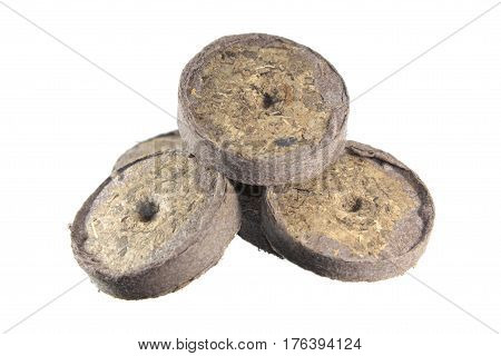 Peat tablets for growing sprouts plants isolated on white background