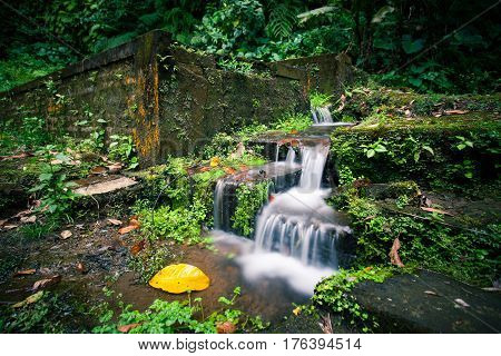 A Small Waterfall By The Stone Stairs In The Jungle