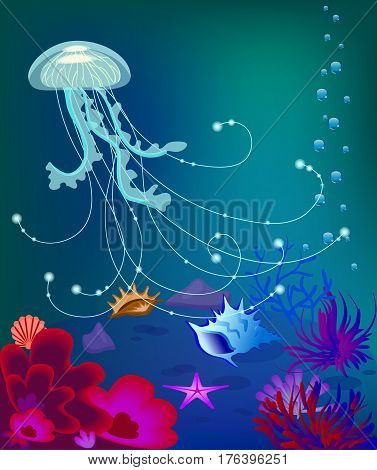Vector jelly fish, shells, coral reefs air bubbles