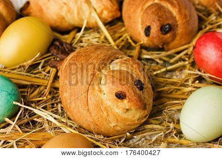 Easter buns shaped early bird skylarks in a nest of straw with colored eggs. Composition the Easter baking