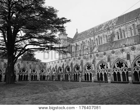 Salisbury Cathedral In Salisbury In Black And White