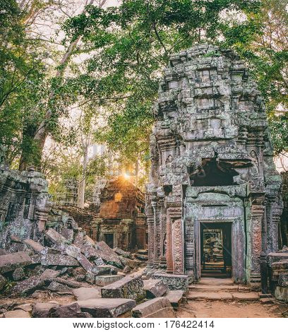 Ta Prohm Temple in Angkor Complex, Siem Reap, Cambodia. It has been left largely unrestored with trees growing among the ruins. Ancient Khmer architecture famous Cambodian landmark, World Heritage