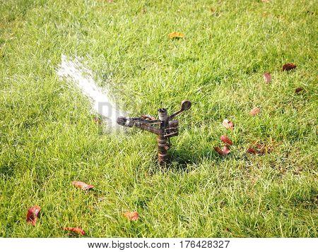 sprinkler watering the grass in the garden