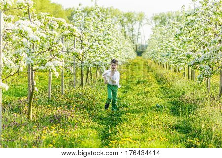 Beautiful Little Boy In A Blooming Garden In The Spring.