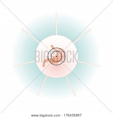 Vector illustration. The emblem logo. Stomach at gunpoint. Seven separate areas in a circle. Different colors.
