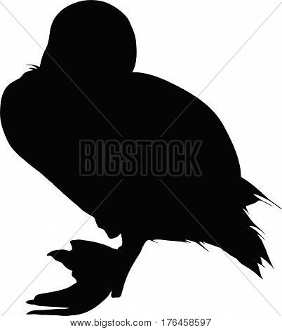 Silhouette of a duckling, standing - digitally hand drawn vector illustration