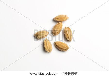 Close up of six natural rice grains