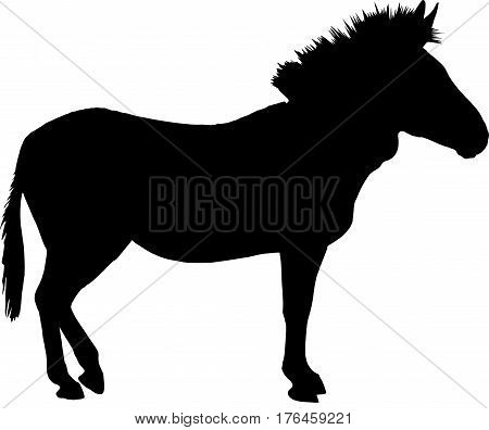 Silhouette of a standing zebra, side view - digitally hand drawn vector illustration