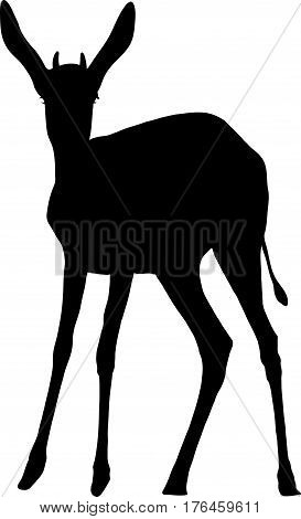 Silhouette of a standing springbok antelope - digitally hand drawn vector illustration