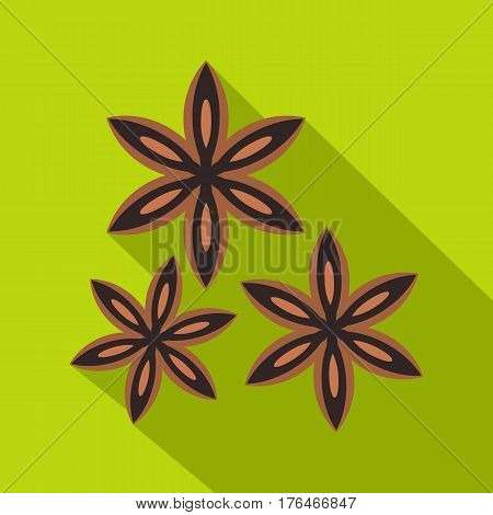 Star anise spice icon. Flat illustration of star anise spice vector icon for web isolated on lime background