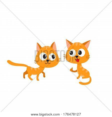 Two cute and funny, naughty, playful red cat characters playing together, cartoon vector illustration isolated on white background. Couple of curious, mischievous, naughty red cat characters