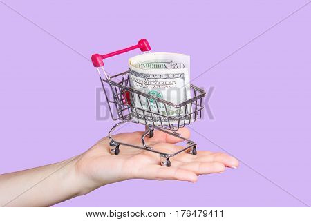 shopping cart on hand with dollars on a purple background