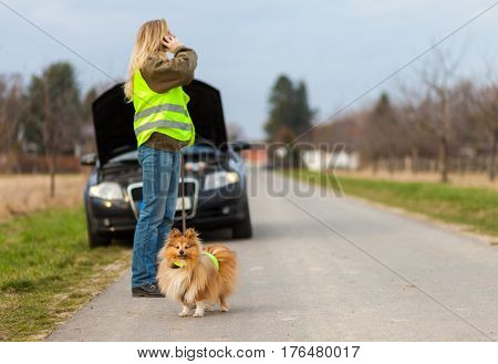 woman and a dog with reflective vest stands on a broken car