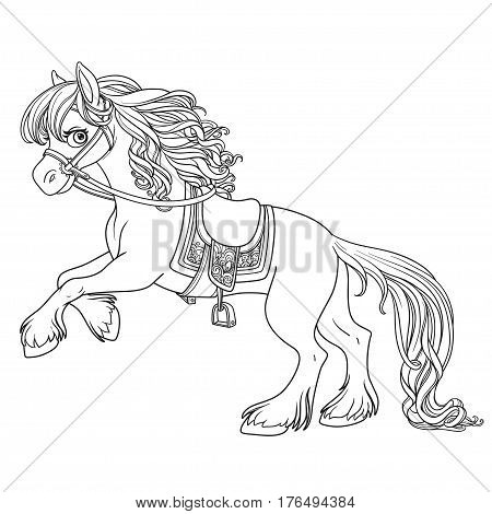 Cute Horse With Lush Mane Bucks Front Hooves Outlined Picture Fo