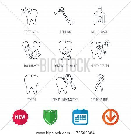 Tooth, stomatology and toothache icons. Mouthwash, dental pliers and diagnostics linear signs. Dentinal tubules, drilling icons. New tag, shield and calendar web icons. Download arrow. Vector