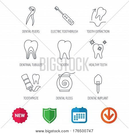 Tooth extraction, electric toothbrush icons. Dental implant, floss and dentinal tubules linear signs. Toothpaste icon. New tag, shield and calendar web icons. Download arrow. Vector