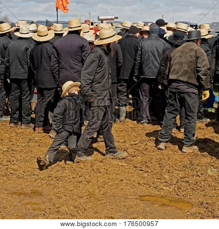 GORDONVILLE PENNSYLVANIA - March 11 2017: An Amish father and son walk in winter mud at the annual spring auction `Amish Mud Sale` which benefits the Fire Company.