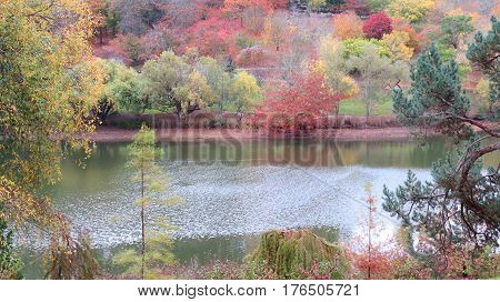 Autumn Fall season pond water trees and plants in brown green yellow orange beautiful landscape scene