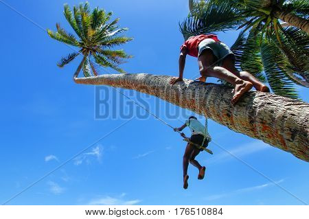 Local kids swinging on a rope swing in Lavena village Taveuni Island Fiji. Taveuni is the third largest island in Fiji.