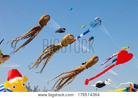 Various colorful kites flying in blue sky. Stingrays Koi fish quid and others.