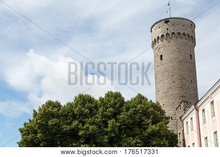 View of Tall Hermann Tower in Tallinn, Estonia