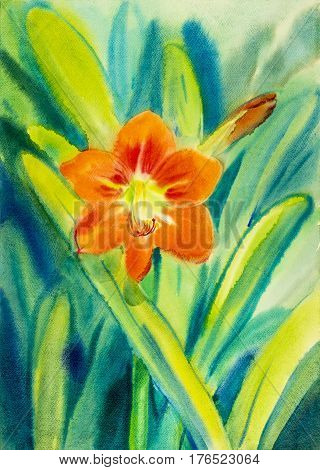 Watercolor original painting on paper red flower of amaryllis flower and green leaves in blue background. Hand Painted