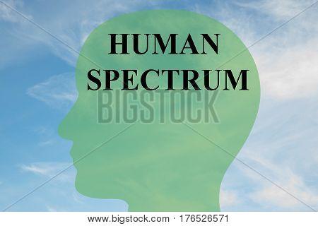 Human Spectrum Concept
