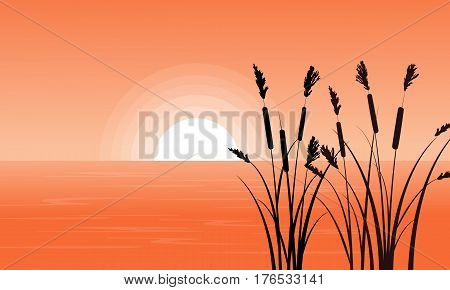 Silhouette of coarse grass on riverbank landscape illustration