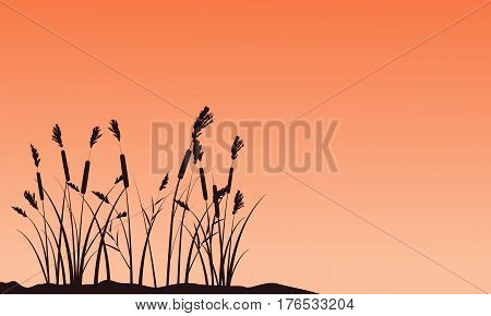 Silhouette of coarse grass on sunset landscape vector art