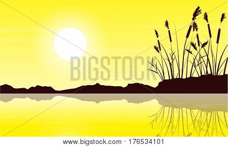Silhouette of coarse grass with yellow sky landscape vector art