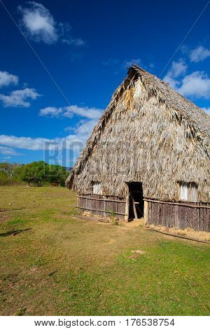 Typical barn on tobacco plantations.Barn used for curing tobacco. The Vinales valley Pinar del Rio Cuba
