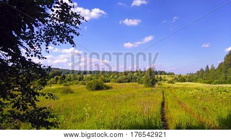 Beautiful summer rural landscape with fields, meadows, vegetation and road receding over the horizon.
