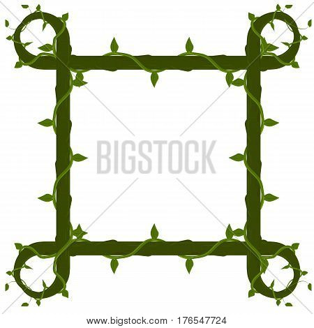 vector frame of vines. isolated on a white background. mockup for the photo