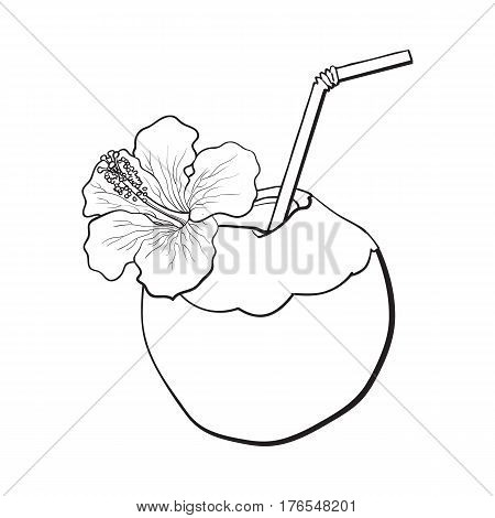 Coconut cocktail, drink decorated with hibiscus flower, summer vacation attribute, sketch vector black and white illustration isolated on white background. Hand drawn coconut drink, cocktail