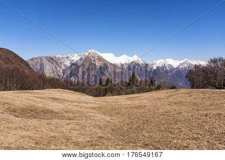 Meadow in march on Monte San Simeone with Julian Alps in the background