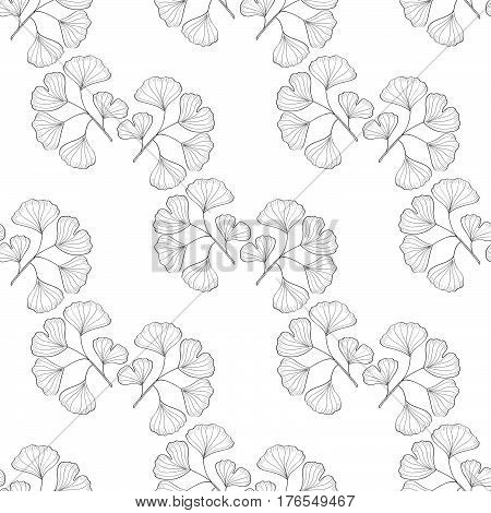 Ginkgo Biloba plant leaf branch. Seamless pattern medicinal plant. Hand drawn sketch illustration. Ingredient for hair and body care cream lotion treatment.
