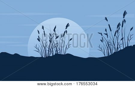 Silhouette of coarse grass with moon scenery vector art