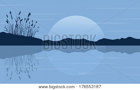 Silhouette of coarse grass on the lake scenery vector art