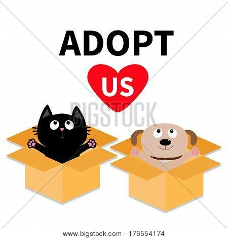 Adopt us. Dont buy. Dog Cat inside opened cardboard package box. Ready for a hug. Puppy pooch kitten cat looking up to pink heart. Pet adoption Flat design Help animal concept White background. Vector
