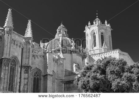 Tarragona (Catalunya Spain): exterior of the gothic cathedral. Black and white