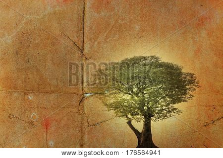 Single tree on damaged old paper background.