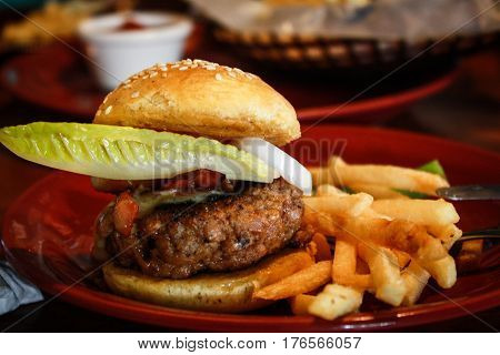 Bar food, Alimentos para bar, comida frita, fast food