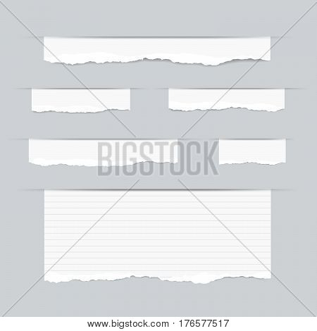 Pieces of torn white blank and ruled copybook strips inserted into cut paper.