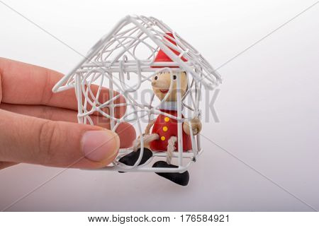 Hand Holding A Model House With Pinocchio In