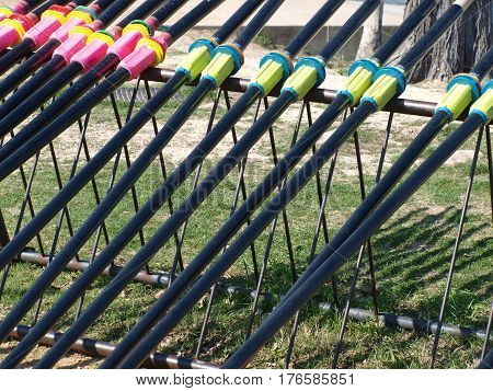 Racks that support the long rowing orrs for the rowing teams practice session form a contrasting pattern of lines.