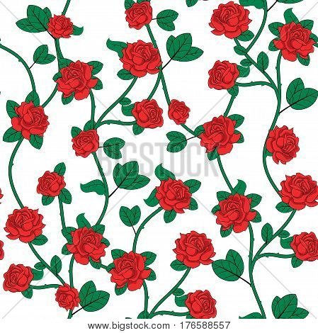 Seamless background with roses on white background. Vector
